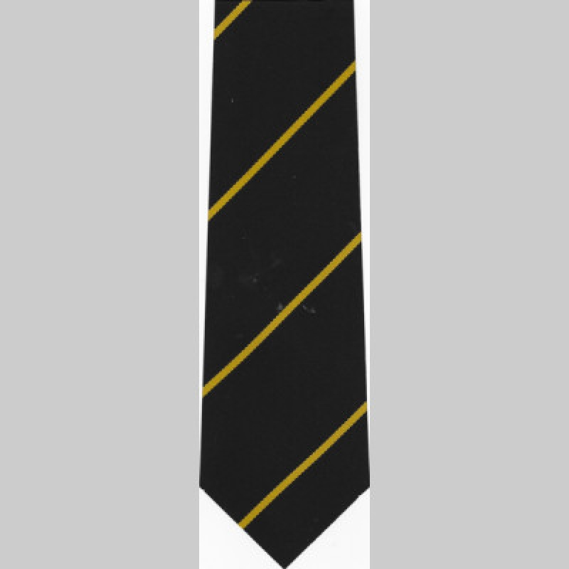 Darton College Senior Clip-On Year Tie