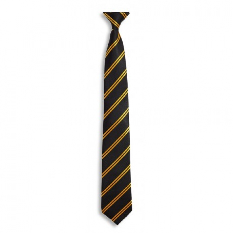 Black & Gold clip on Tie (DS122)